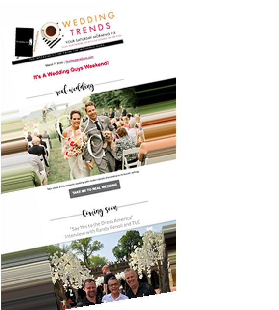The-Wedding-Guys-Newsletter-Examplee